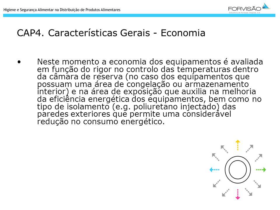 CAP4. Características Gerais - Economia