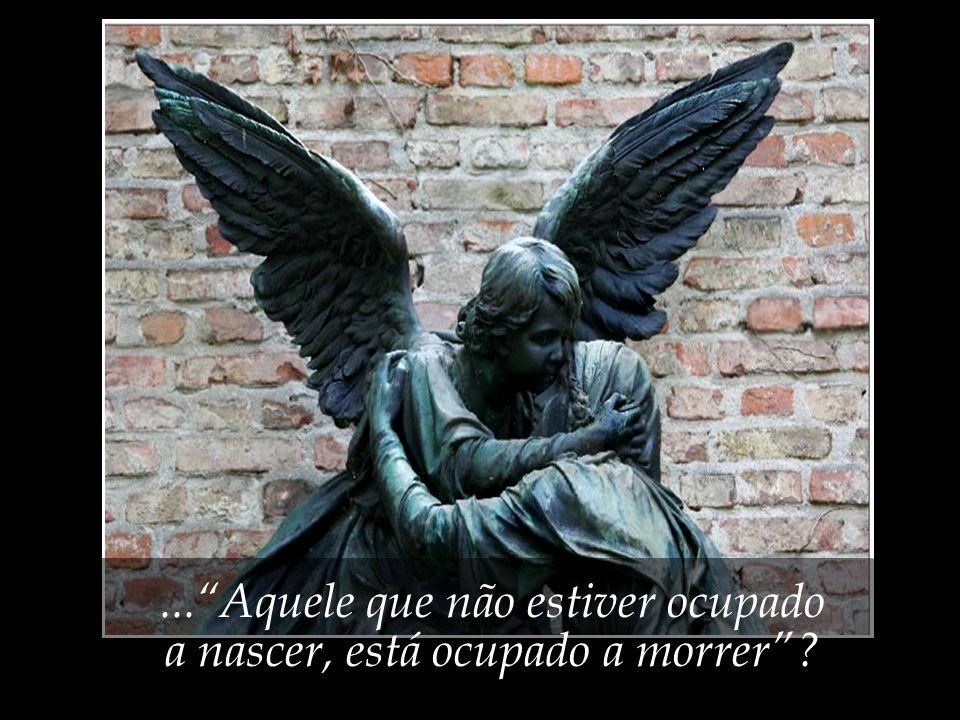 ... Aquele que não estiver ocupado a nascer, está ocupado a morrer