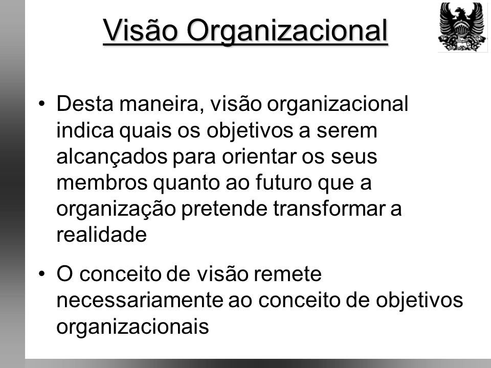 Visão Organizacional