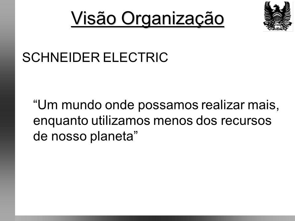 Visão Organização SCHNEIDER ELECTRIC