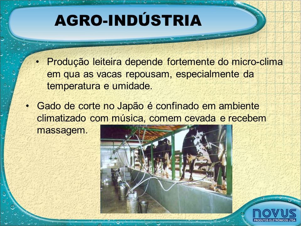AGRO-INDÚSTRIA Produção leiteira depende fortemente do micro-clima em qua as vacas repousam, especialmente da temperatura e umidade.