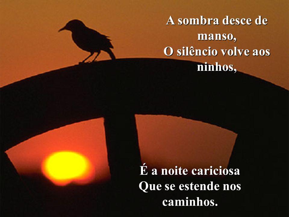 O silêncio volve aos ninhos, Que se estende nos caminhos.