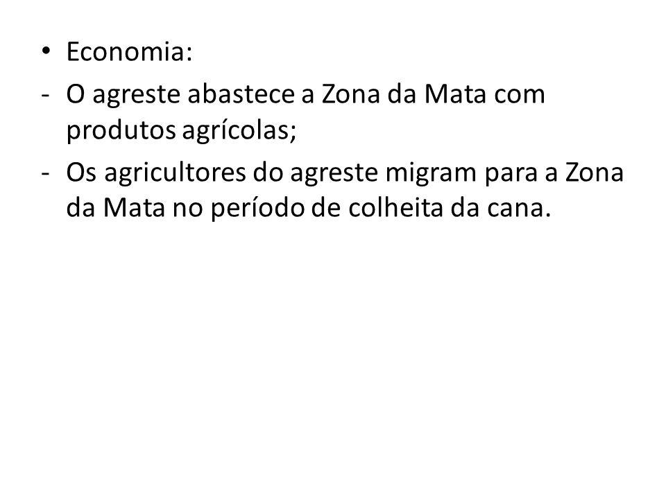 Economia: O agreste abastece a Zona da Mata com produtos agrícolas;