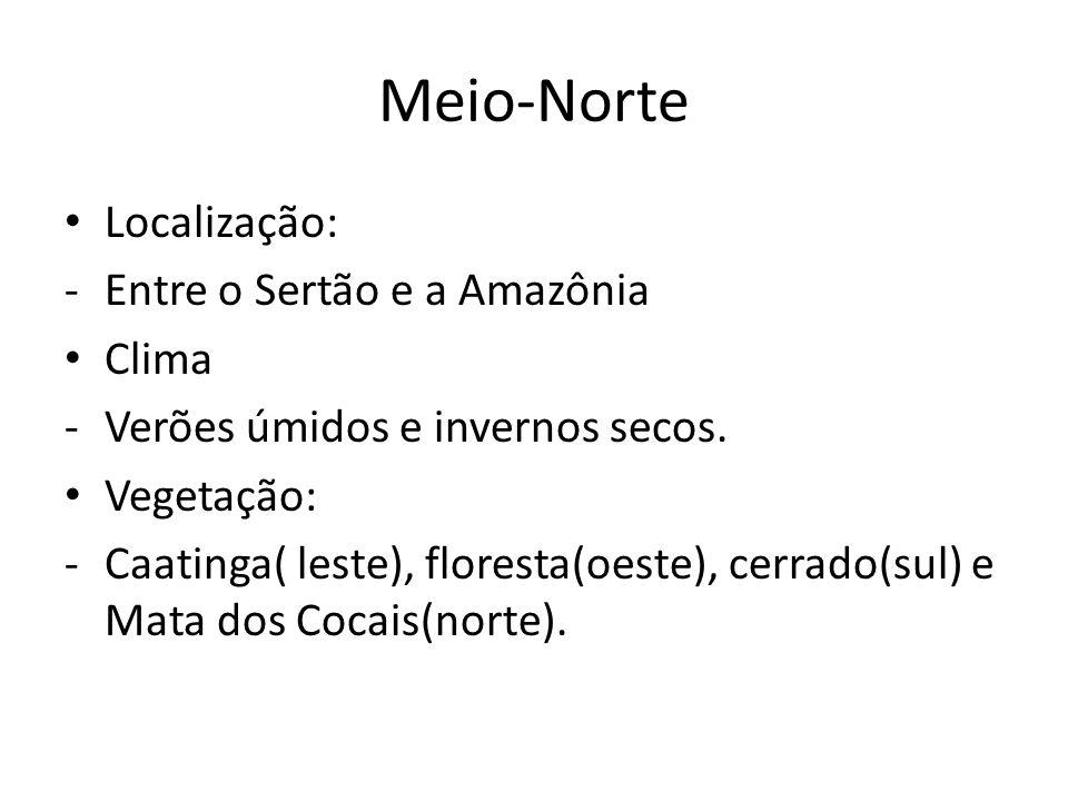 Meio-Norte Localização: Entre o Sertão e a Amazônia Clima
