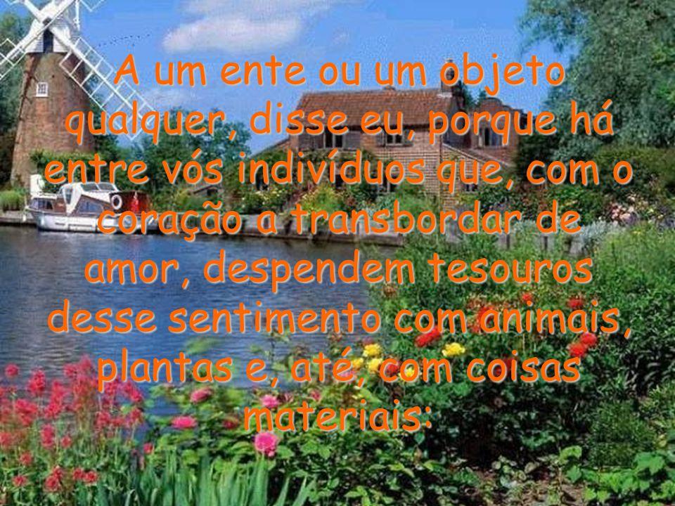 A um ente ou um objeto qualquer, disse eu, porque há entre vós indivíduos que, com o coração a transbordar de amor, despendem tesouros desse sentimento com animais, plantas e, até, com coisas materiais: