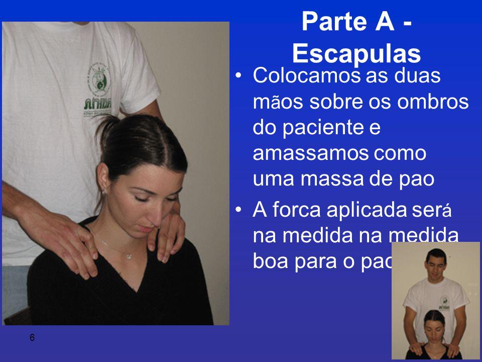 Parte A - Escapulas Colocamos as duas mãos sobre os ombros do paciente e amassamos como uma massa de pao.
