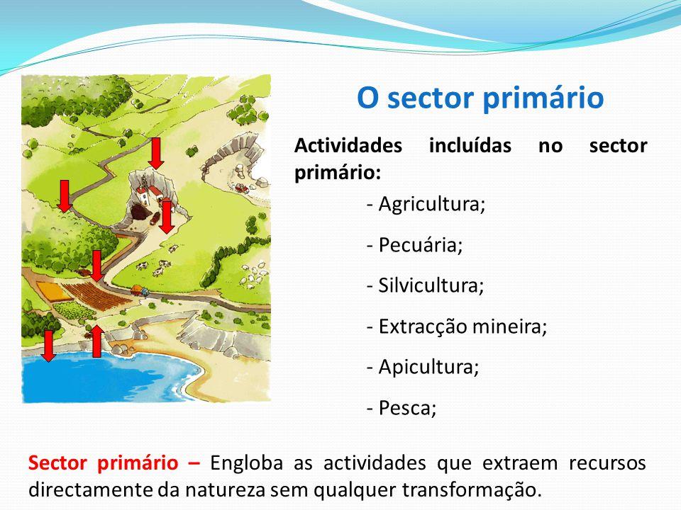 O sector primário Actividades incluídas no sector primário: