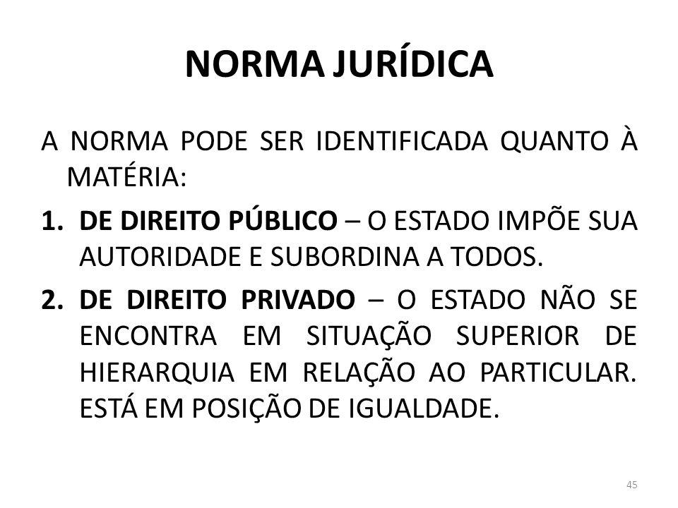 NORMA JURÍDICA A NORMA PODE SER IDENTIFICADA QUANTO À MATÉRIA: