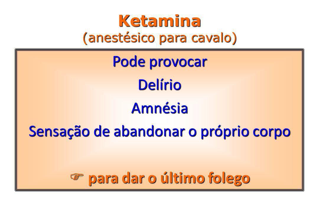Ketamina (anestésico para cavalo)