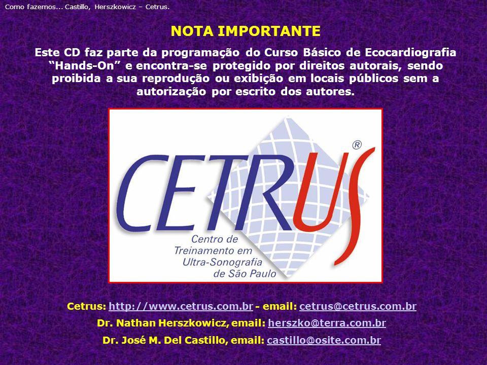 Como fazemos... Castillo, Herszkowicz – Cetrus.