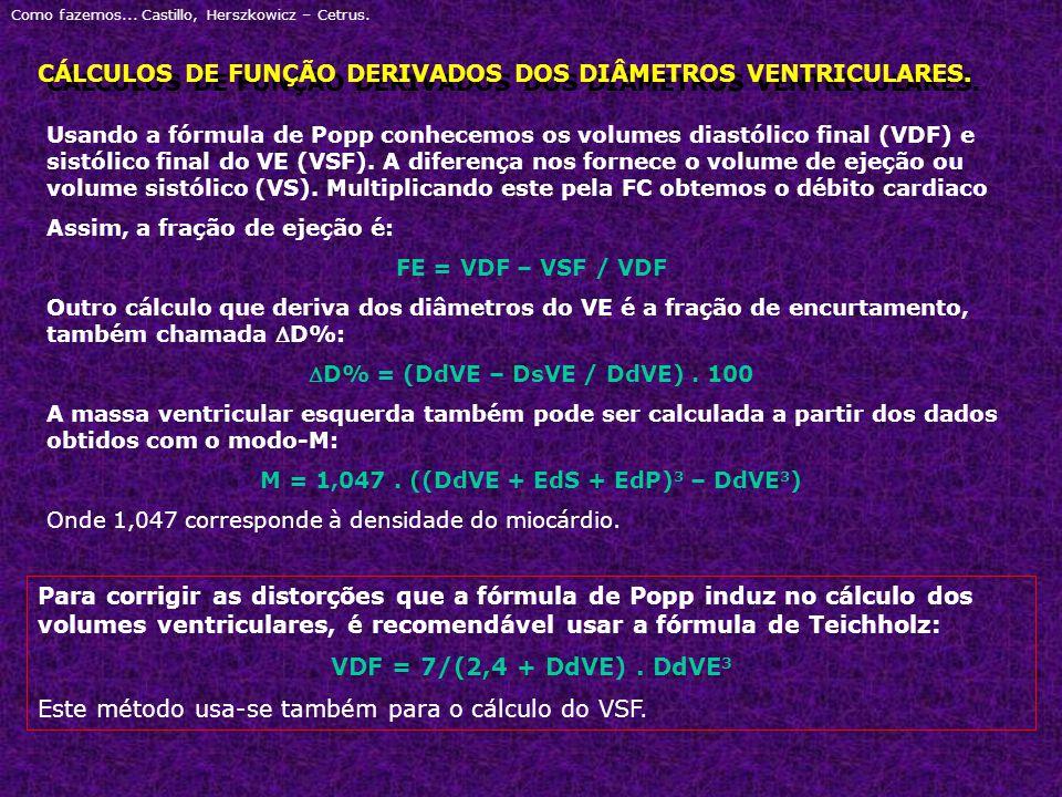 CÁLCULOS DE FUNÇÃO DERIVADOS DOS DIÂMETROS VENTRICULARES.