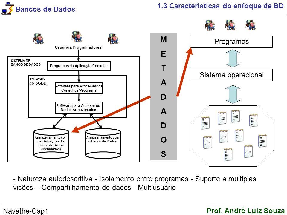 M E T A D O S 1.3 Características do enfoque de BD Programas