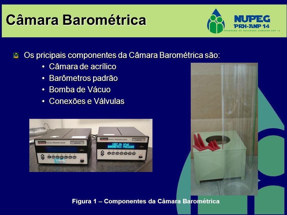 Câmara Barométrica Os pricipais componentes da Câmara Barométrica são: