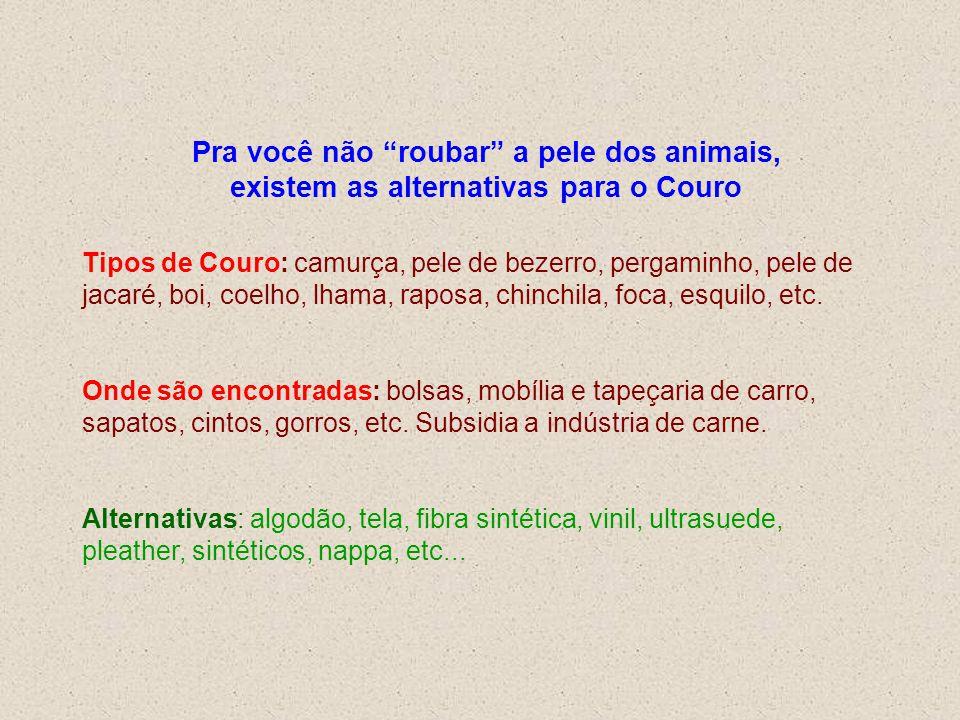 Pra você não roubar a pele dos animais, existem as alternativas para o Couro