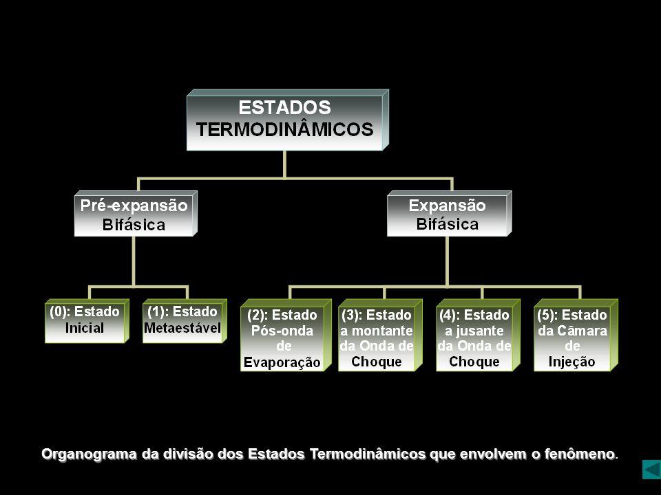 Organograma da divisão dos Estados Termodinâmicos que envolvem o fenômeno.