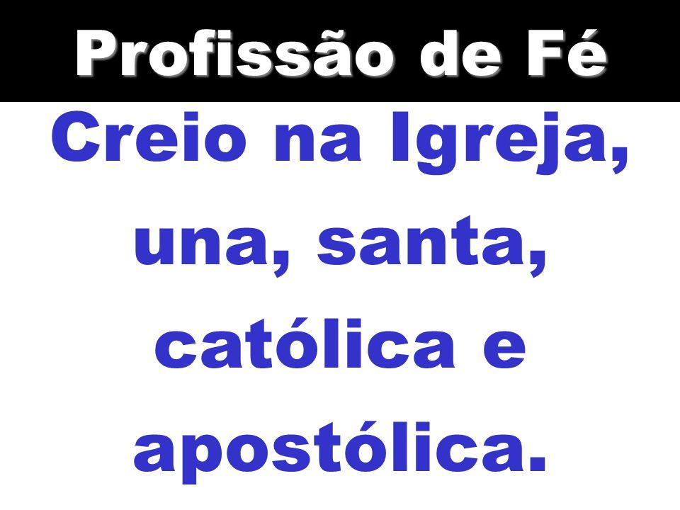 Creio na Igreja, una, santa, católica e apostólica.