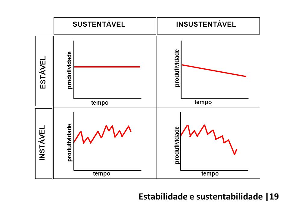 Estabilidade e sustentabilidade |19