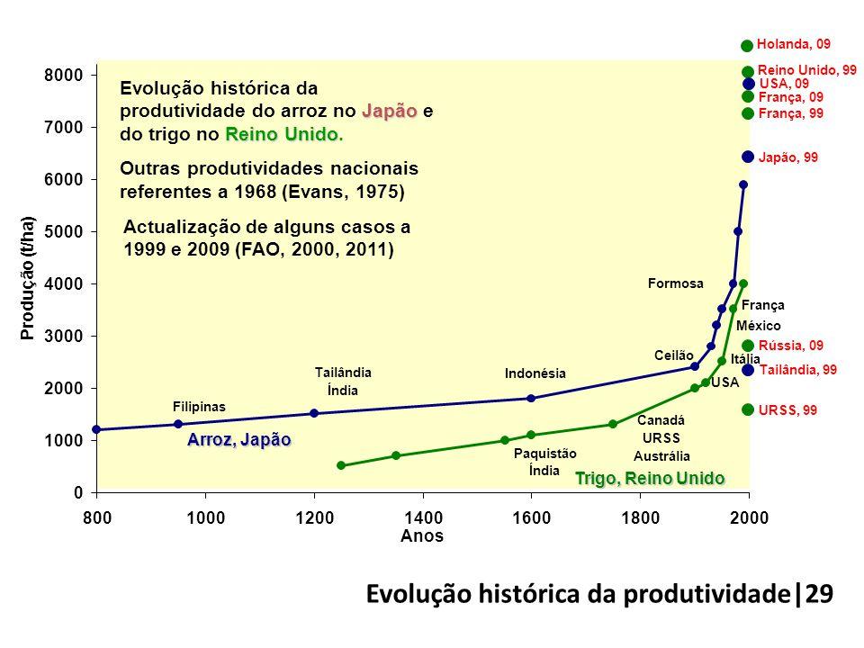 Evolução histórica da produtividade|29
