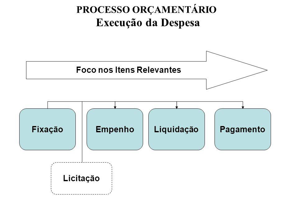PROCESSO ORÇAMENTÁRIO Foco nos Itens Relevantes