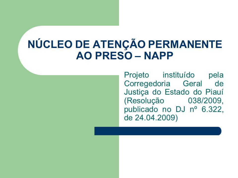 NÚCLEO DE ATENÇÃO PERMANENTE AO PRESO – NAPP