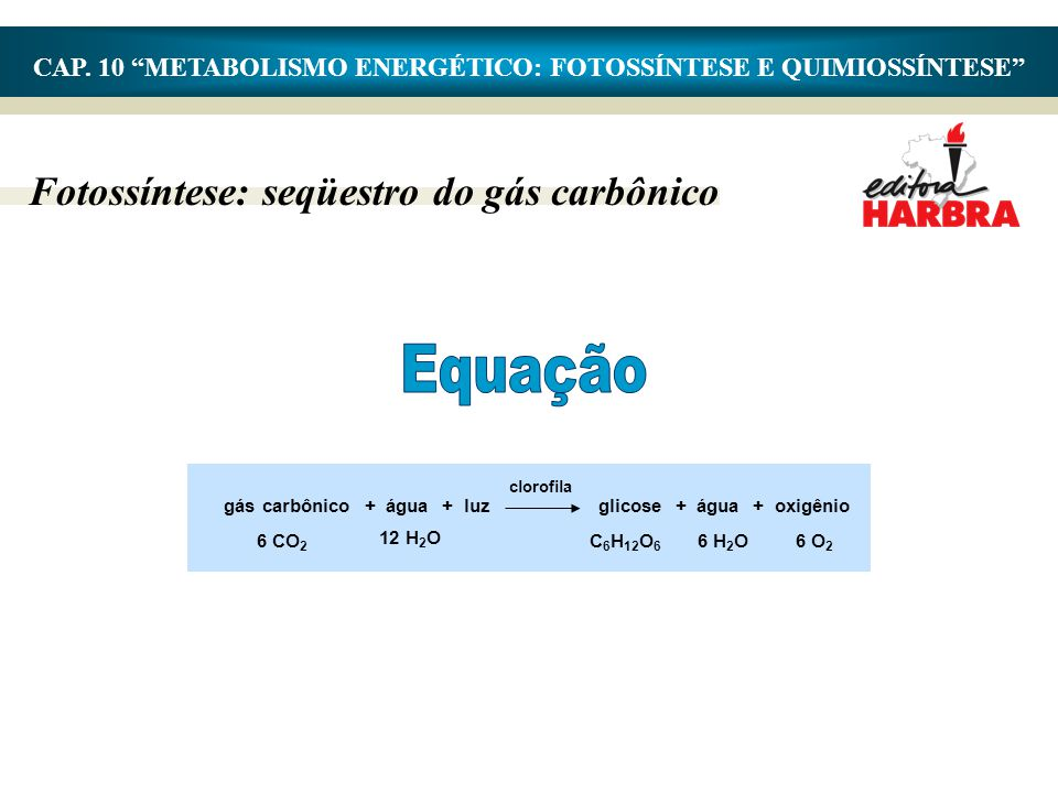 CAP. 10 METABOLISMO ENERGÉTICO: FOTOSSÍNTESE E QUIMIOSSÍNTESE