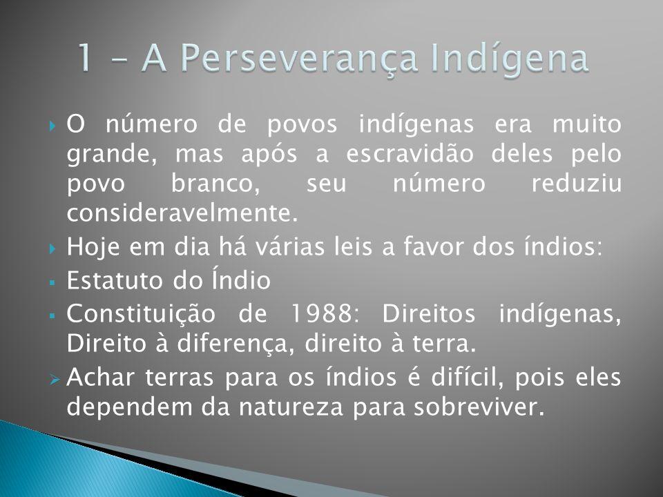 1 – A Perseverança Indígena