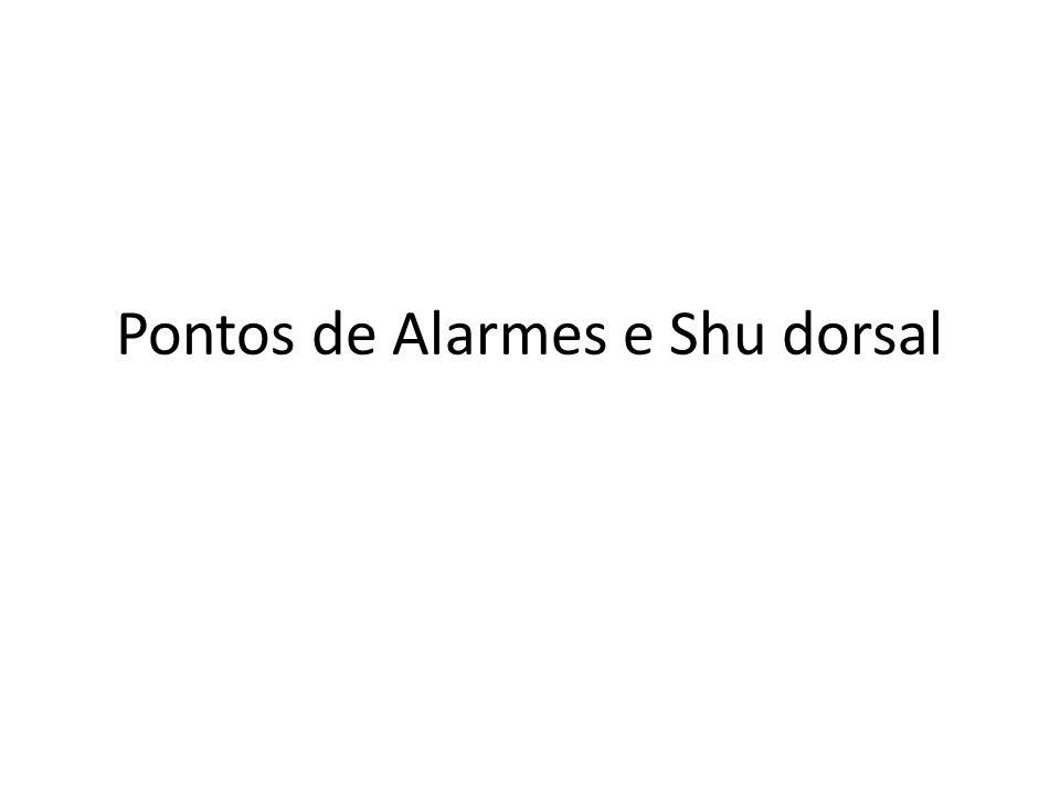 Pontos de Alarmes e Shu dorsal