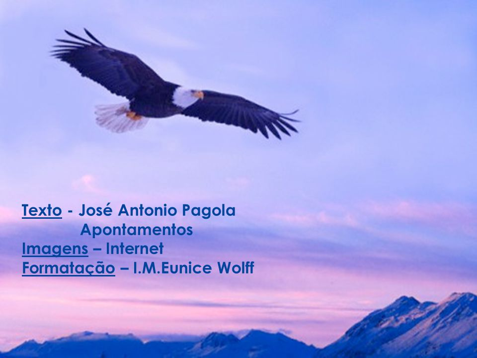 Texto - José Antonio Pagola