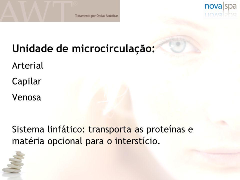 Unidade de microcirculação: