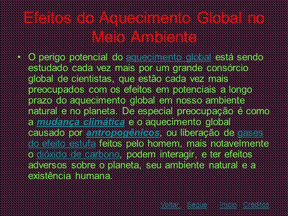 Efeitos do Aquecimento Global no Meio Ambiente