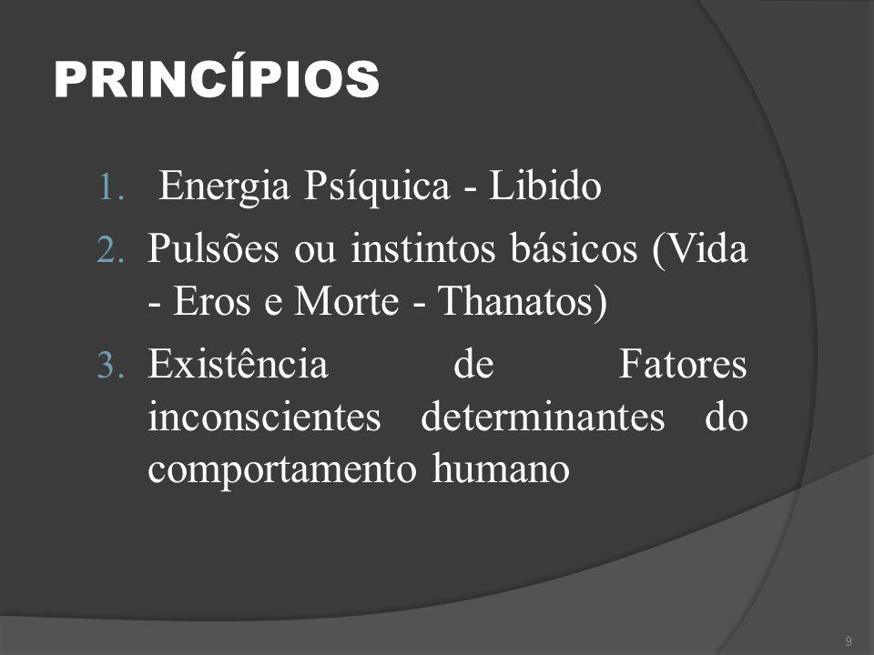 PRINCÍPIOS Energia Psíquica - Libido