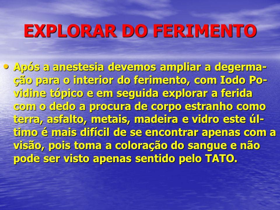 EXPLORAR DO FERIMENTO