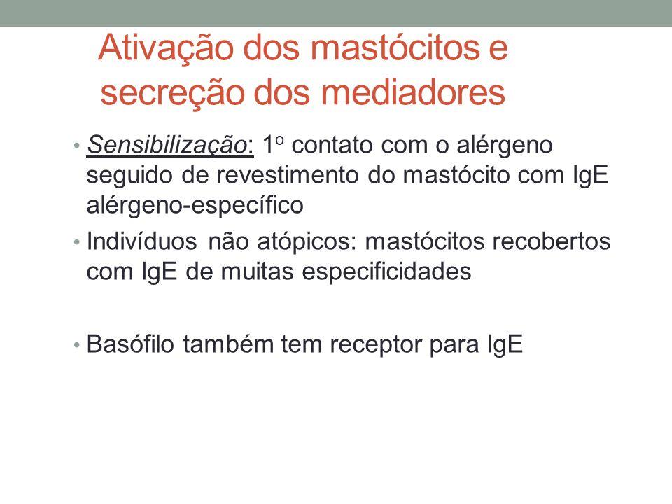 Ativação dos mastócitos e secreção dos mediadores