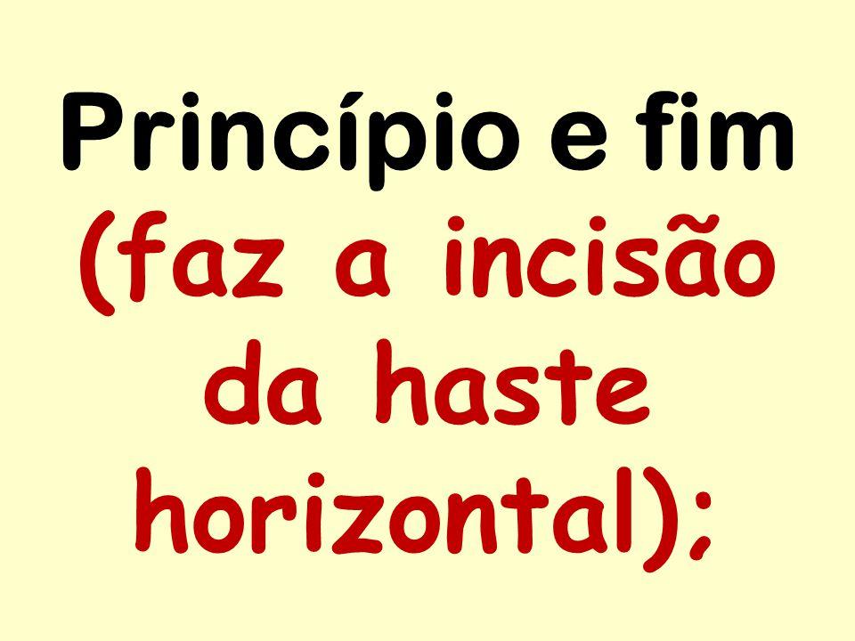 Princípio e fim (faz a incisão da haste horizontal);