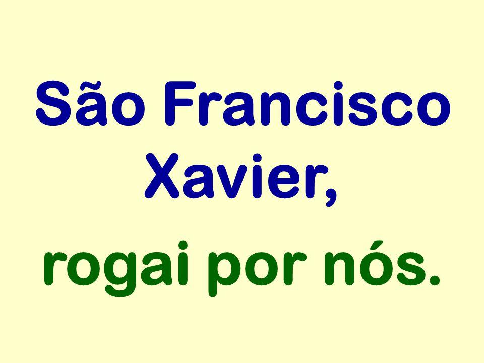 São Francisco Xavier, rogai por nós.