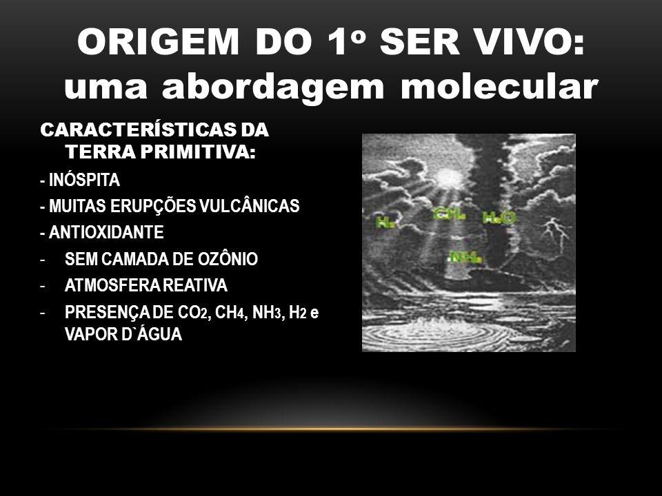 ORIGEM DO 1o SER VIVO: uma abordagem molecular