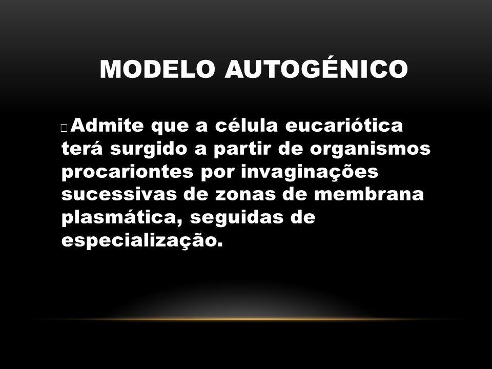 MODELO AUTOGÉNICO