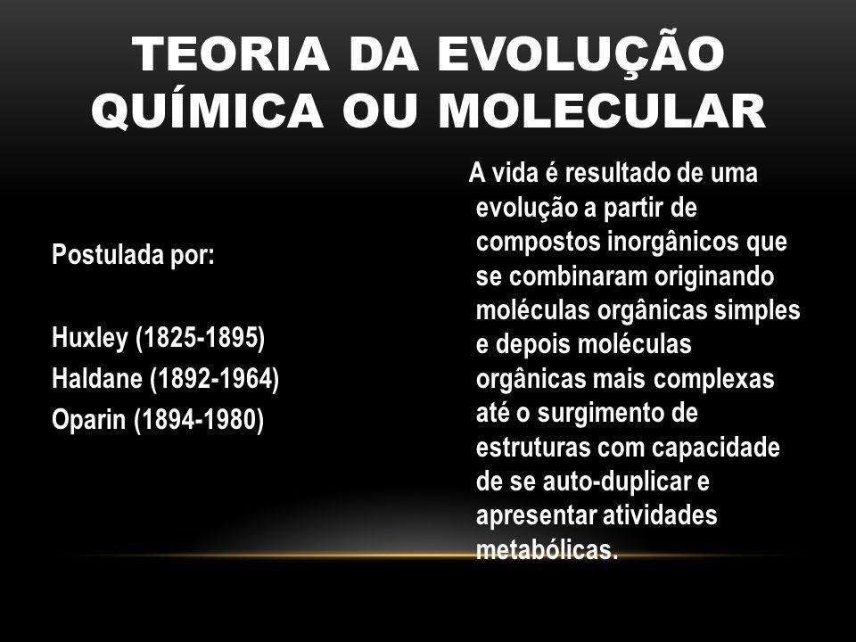 TEORIA DA EVOLUÇÃO QUÍMICA OU MOLECULAR