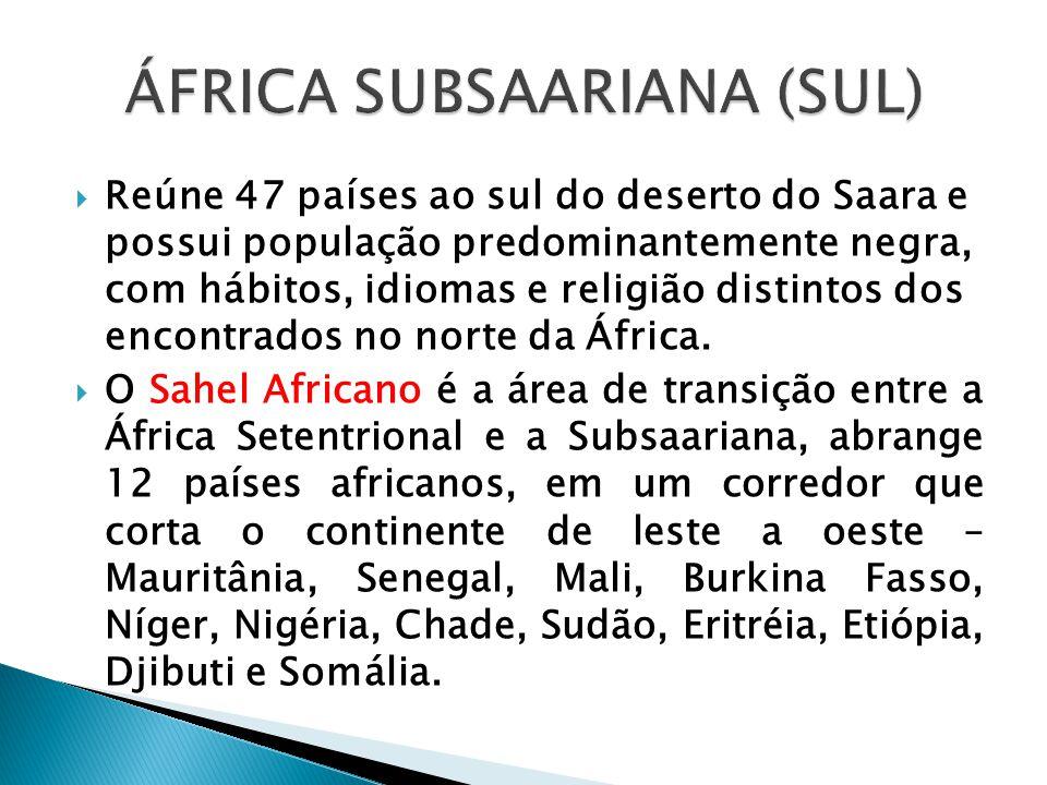 ÁFRICA SUBSAARIANA (SUL)