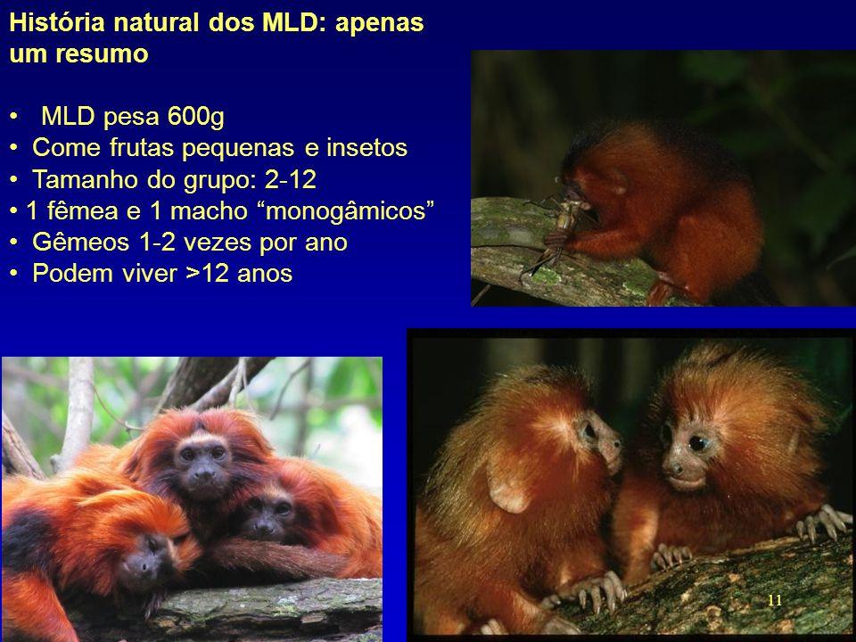 História natural dos MLD: apenas um resumo MLD pesa 600g