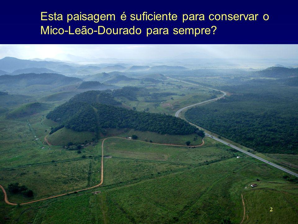 Esta paisagem é suficiente para conservar o