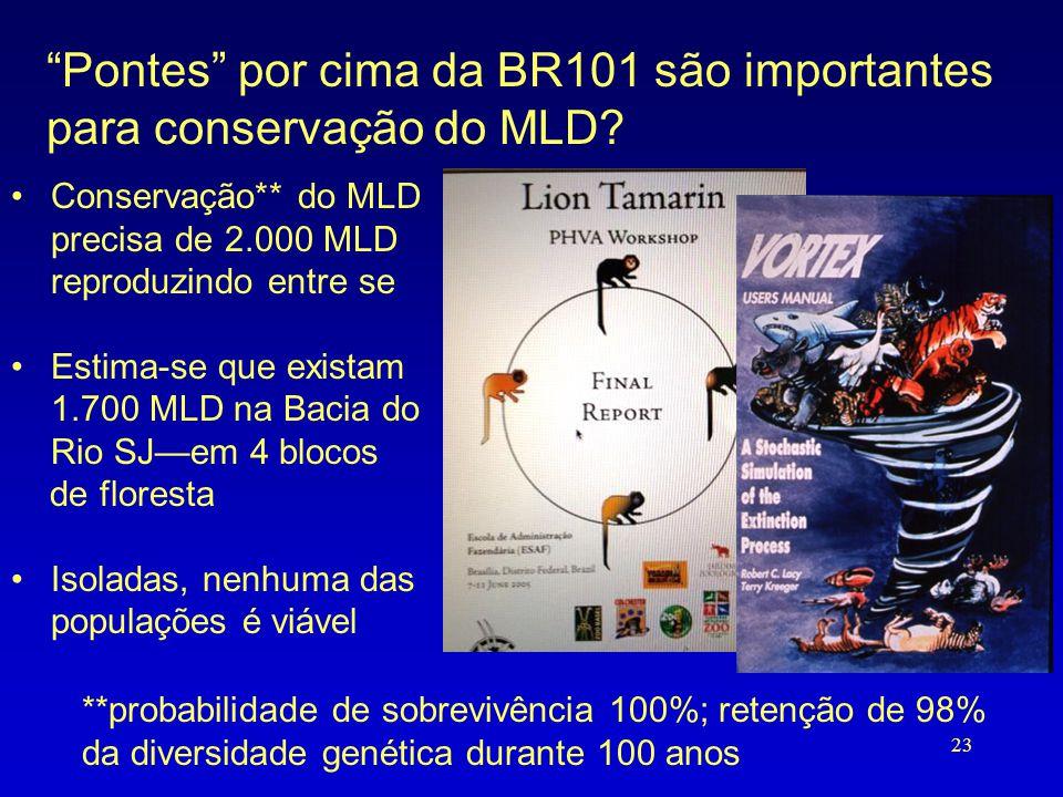 Pontes por cima da BR101 são importantes para conservação do MLD