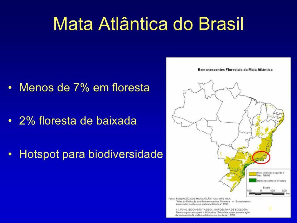 Mata Atlântica do Brasil