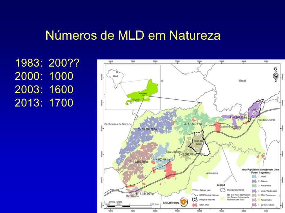 Números de MLD em Natureza 1983: 200 2000: 1000 2003: 1600