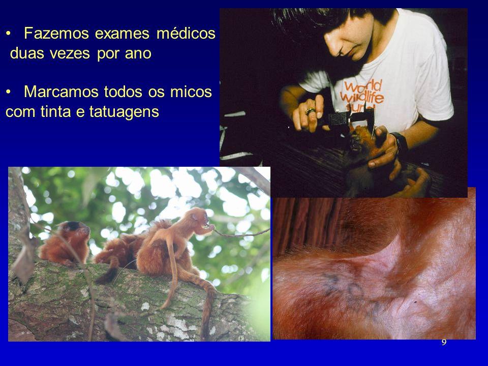 Fazemos exames médicos duas vezes por ano Marcamos todos os micos