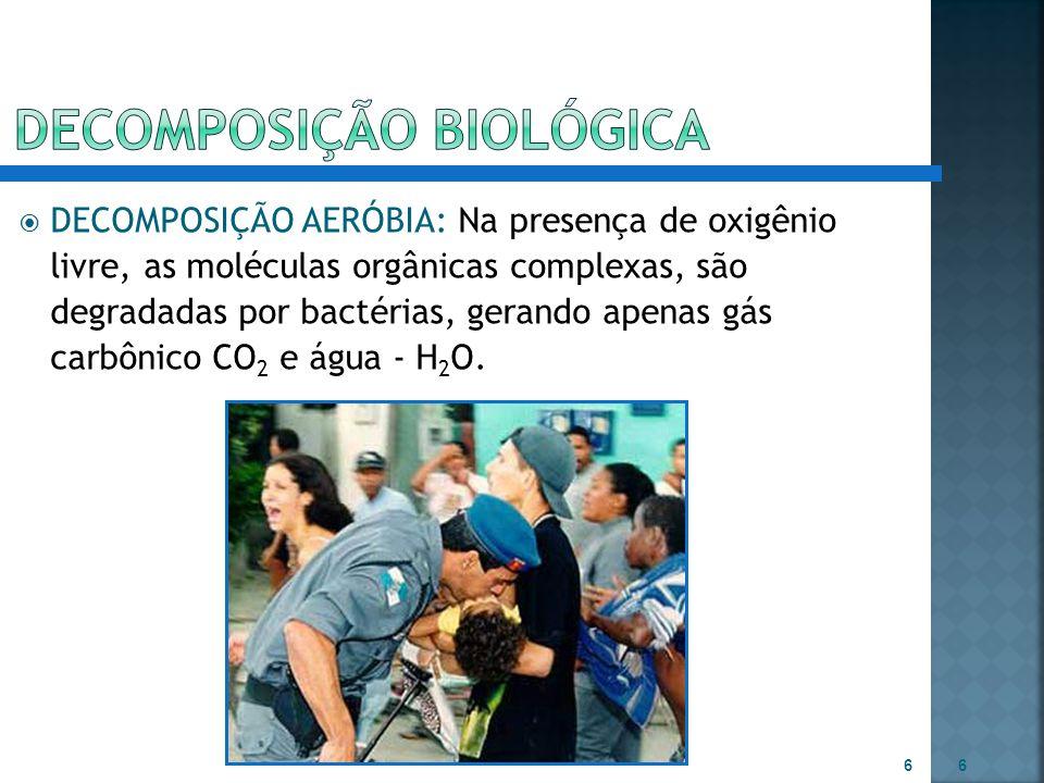 DECOMPOSIÇÃO BIOLóGICA