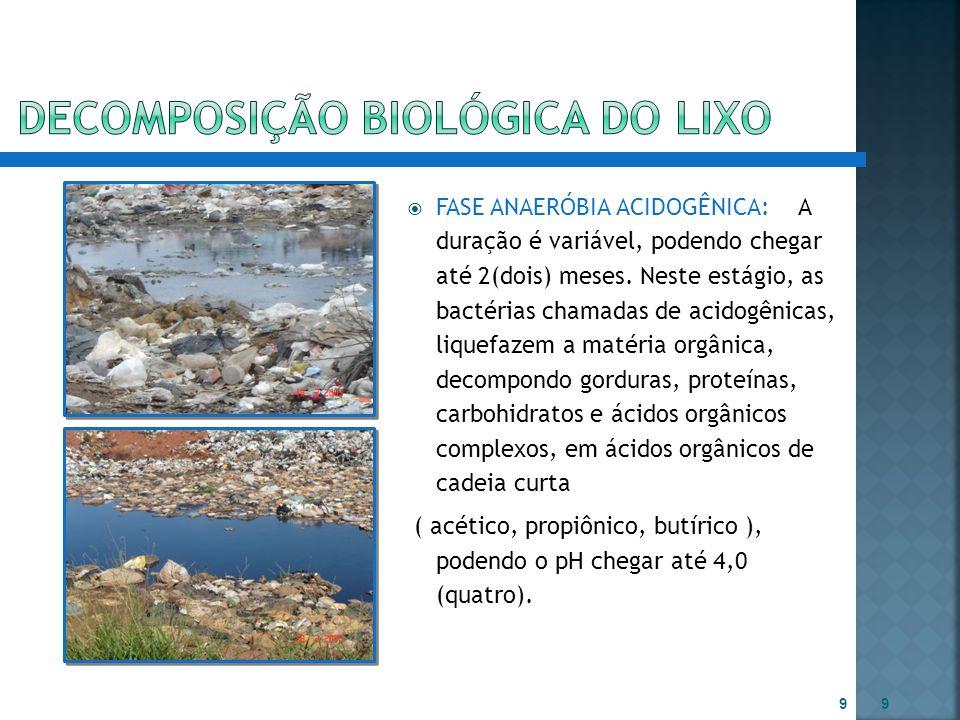 DECOMPOSIÇÃO BIOLóGICA do lixo