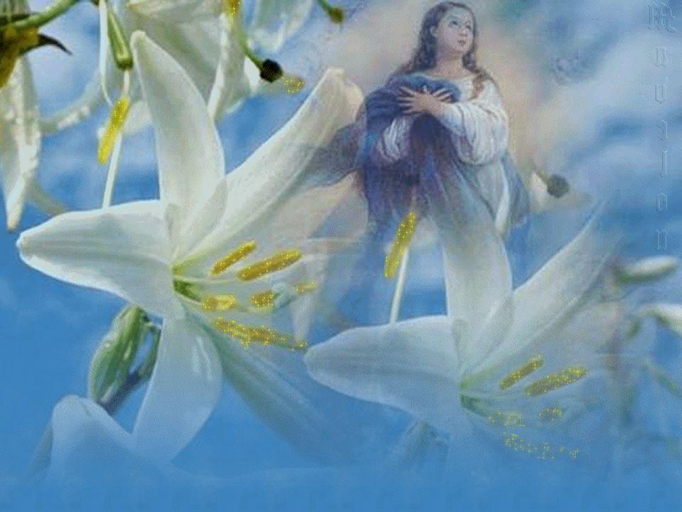 «Ave, cheia de graça, o Senhor está contigo».