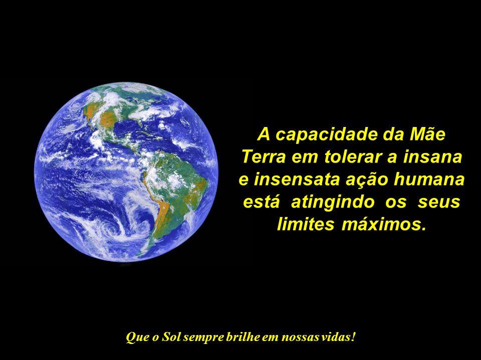 Terra em tolerar a insana