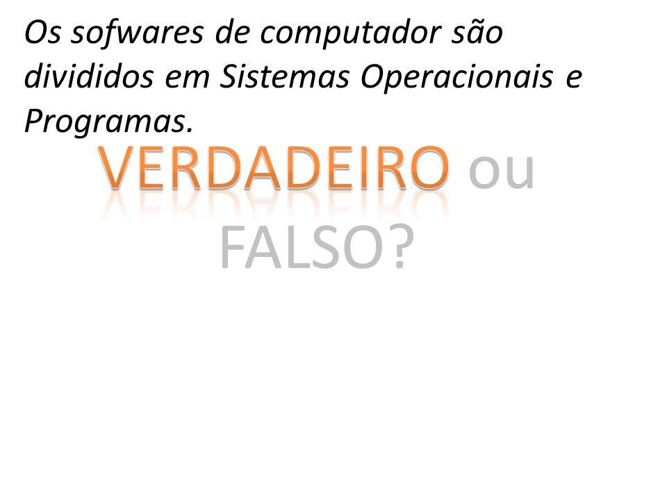 Os sofwares de computador são divididos em Sistemas Operacionais e Programas.